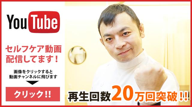 動画配信チャンネル